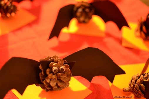 65-chauves-souris
