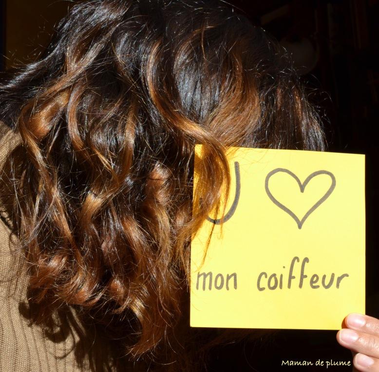 78-mon-coiffeur-est-un-artiste