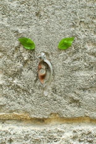 Zurbanard Arles 6