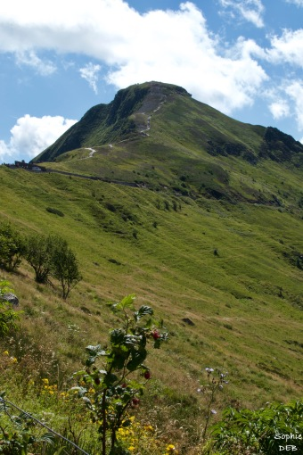 RT15 08 Puy Mary Monts du Cantal J13