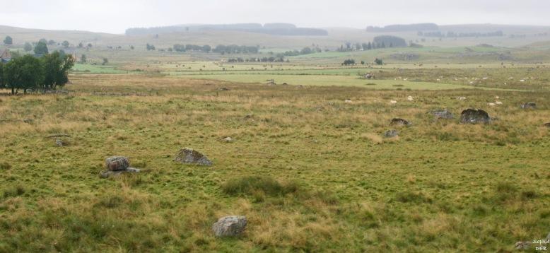 RT15 20 Plateau Aubrac J15