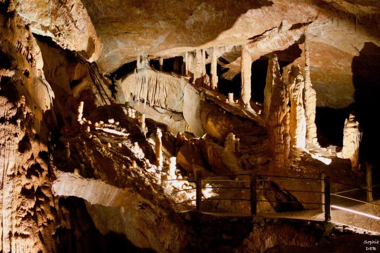 RT15 28 Grotte de Dargilan J16