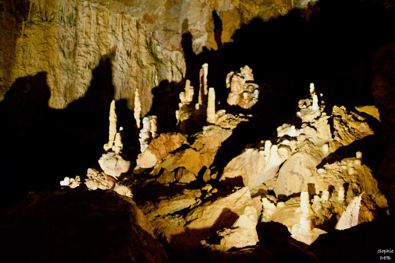RT15 32 Grotte de Dargilan J16